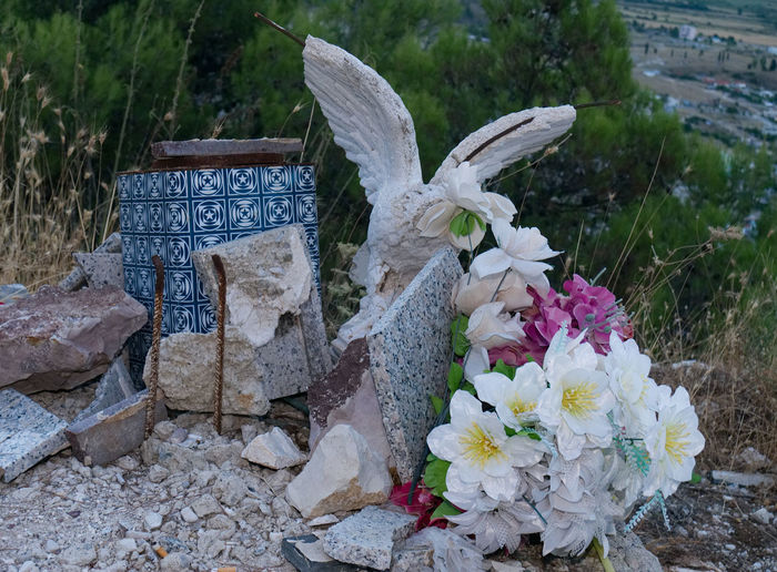 Albania Albania Tour Eagle Gjirokaster Bird Cemetery Close-up Day Flower Flower Head Fragility No People Outdoors Sculture Tombstone