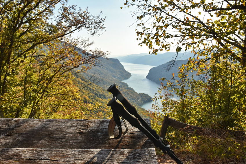 Danube gorge, Serbia Tree Plant Beauty In Nature Mountain Nature Scenics - Nature Autumn Wood - Material Tranquil Scene Tranquility Day Sky Outdoors No People Landscape Idyllic Mountain Range Growth Autumn Autumn colors Table Wooden Poles Hiking Pole Hiking