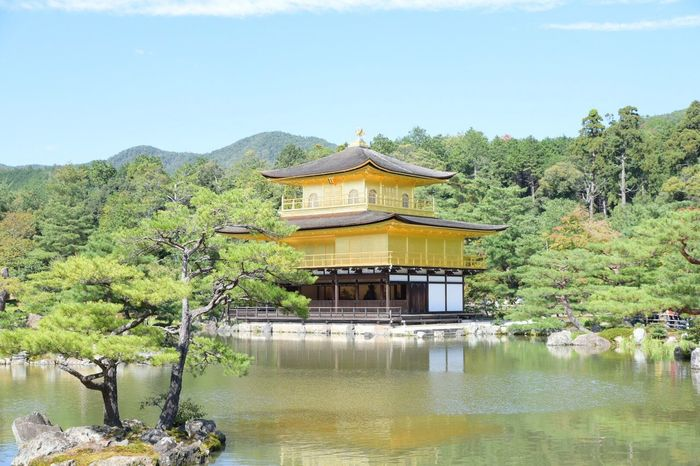 Japanese Temple Kyoto At 鹿苑寺(金閣寺) Kinkaku-ji Temple