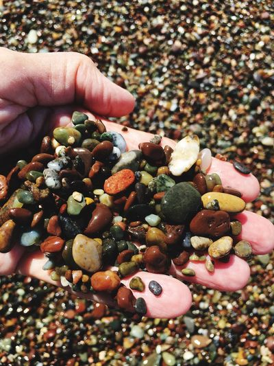Close-up of hand holding pebbles at beach