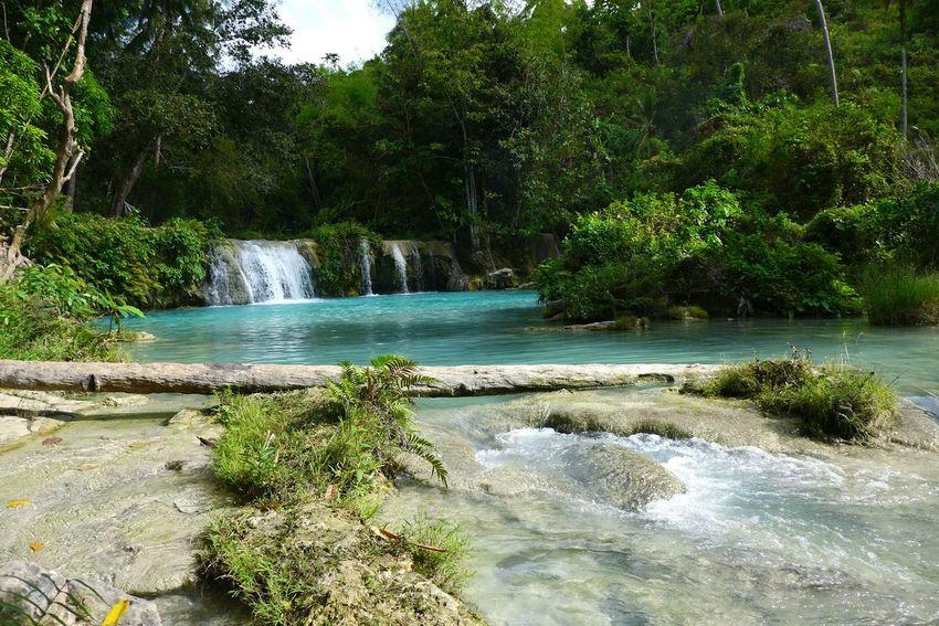 DMC-LX7 Cambugahay Falls Siquijor Paradise Jungle Philippines