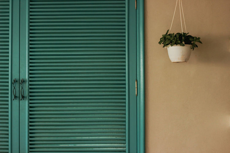 Serenity EyeEmNewHere Indoors  Blue Teal From Front Copy Space Still Life Photography White Wall Peace No People Window Box Potted Plant Close-up Architecture Plant Built Structure Green Color Building Exterior Shutter Closed Door Door Entryway Locked