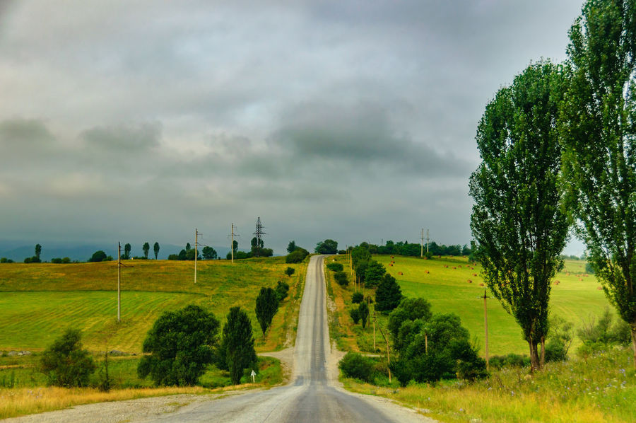 Tree The Way Forward Landscape Cloud - Sky Field Agriculture Rural Scene Nature Beauty In Nature No People Outdoors Scenics Day Sky Beauty In Nature Rural Landscape Tranquility Highway Car Travel Car Trip Road Asfalt Storm Cloud Grass Freshness