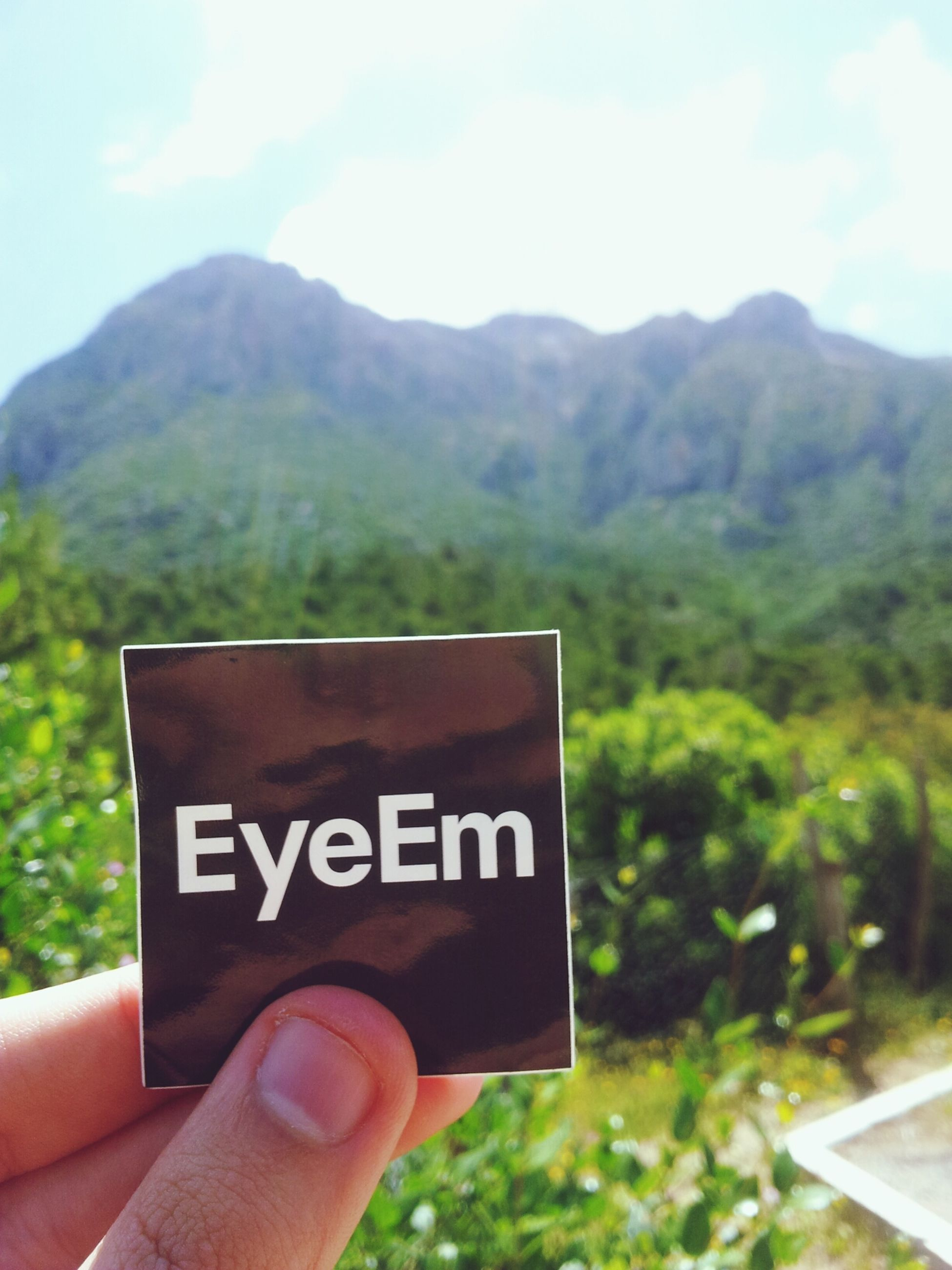 person, mountain, communication, personal perspective, text, part of, holding, cropped, western script, tree, focus on foreground, landscape, sky, mountain range, unrecognizable person, human finger, close-up