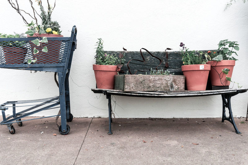 Architecture Day Fredericksburg Growth Minimal Nature No People Outdoors Plant Potted Plant Texas