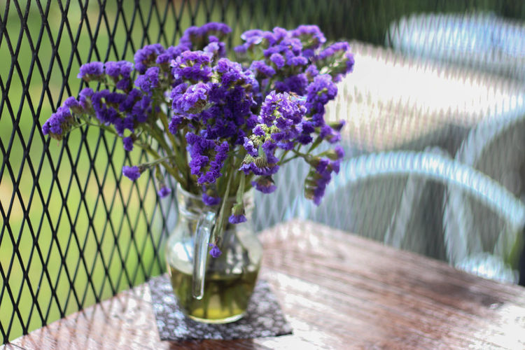 Beauty In Nature Close-up Day Flower Flower Head Fragility Freshness Nature No People Outdoors Purple Table Water