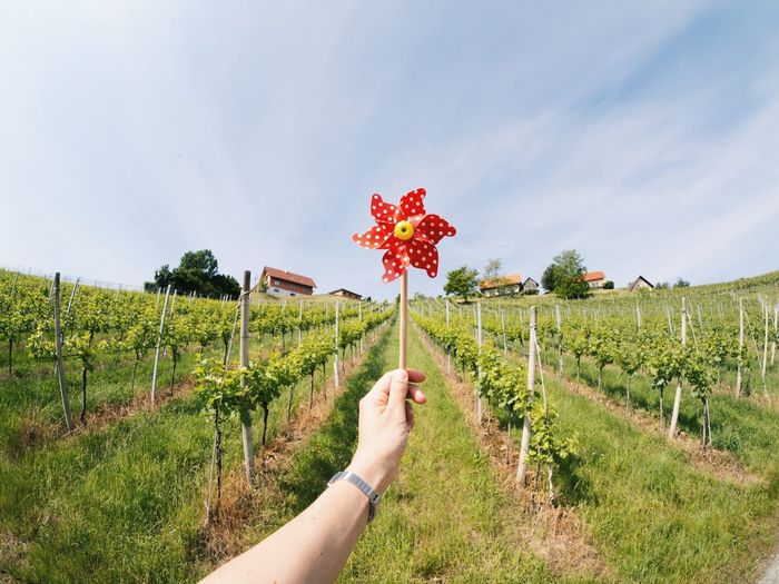Cropped image of hand holding pinwheel toy on field against sky