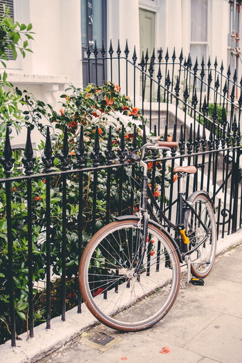 Bicycle Transportation Railing Flower Stationary City Fence Outdoors Architecture London