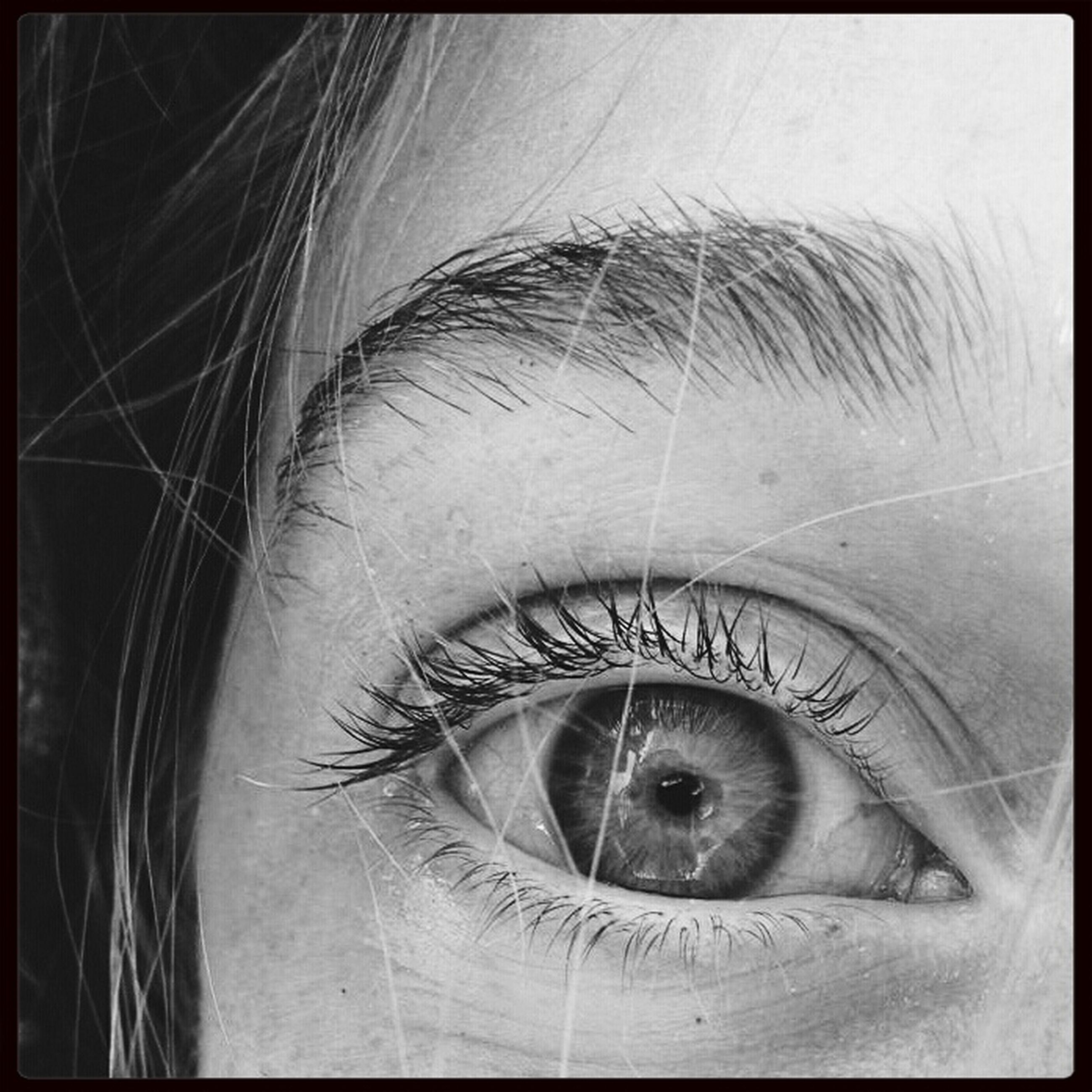 human eye, close-up, eyelash, indoors, eyesight, sensory perception, part of, auto post production filter, looking at camera, human skin, human face, transfer print, extreme close-up, lifestyles, portrait, eyeball, iris - eye