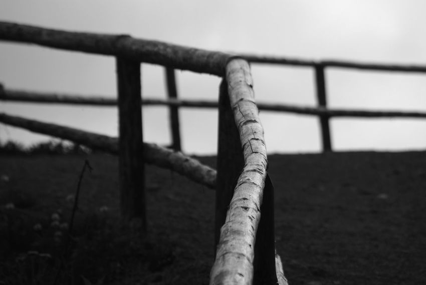 Black & White Black And White Photography Close-up Day Focus On Foreground Hiking Hiking Trail Horizon Nature No People Outdoors Railing Sky Wooden Railing The Great Outdoors - 2017 EyeEm Awards