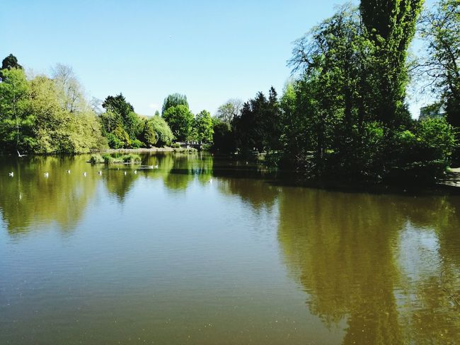 Pittville Lake Cheltenham