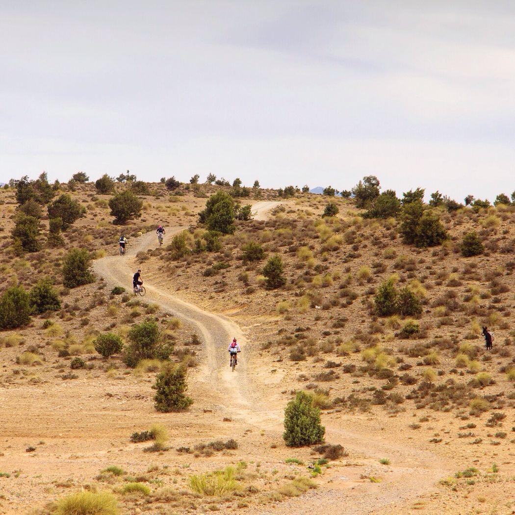 Celebrate Your Ride Bike Mountain Mountain Biking Mountain Bike Bicycle Bicicleta Bikers Atlasmountains Atlas Marroco Marruecos Amazigh BTT Alternative Fitness
