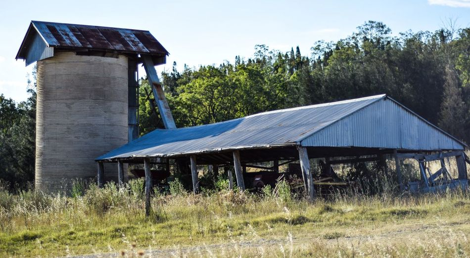 Old agricultural buildings in meadow