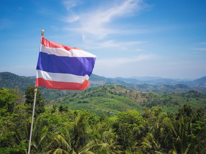 Flag of Thailand with view on Phuket Jungle Green Island Hill Phuket Thailand Travel Nature Outdoors Rural Scene Flag Sky Landscape National Flag Plantation Scenics Idyllic