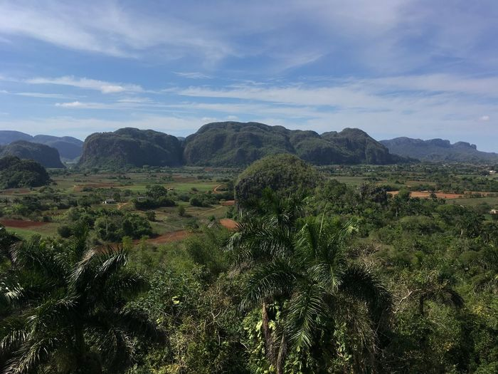 Valle de Viñales Beauty In Nature Cloud - Sky Day Environment Green Color Growth Idyllic Land Landscape Mountain Mountain Range Nature No People Non-urban Scene Outdoors Plant Scenics - Nature Sky Tranquil Scene Tranquility Tree