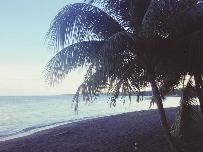 Dauin brown beach Hanging Out Relaxing Travel Enjoying Life Why Not Take A Break
