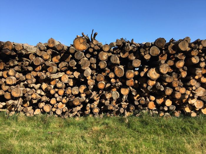 Stack Firewood