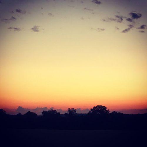 Sunsets Sunset Beutiful Sky  Sunset On Trees Treeline Sunset Treeline