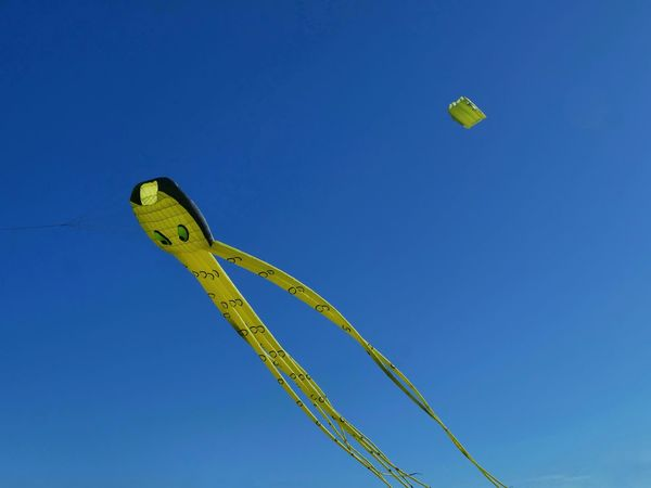 Paint The Town Yellow Blue Cerf Volant Day Low Angle View No People Outdoors Sky