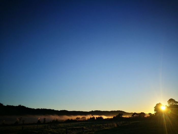 Sunset Sky Animal Themes