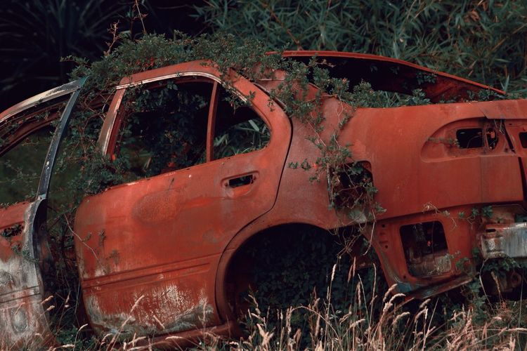 Óxido y maleza ( IV ). Antique Metal Land Vehicle Rusty Mode Of Transport Damaged Abandoned Obsolete Outdoors No People Day Ivy Consumed By Red Transportation Bad Condition Old Car
