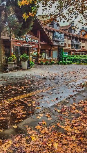 Outono em Gramado First Eyeem Photo