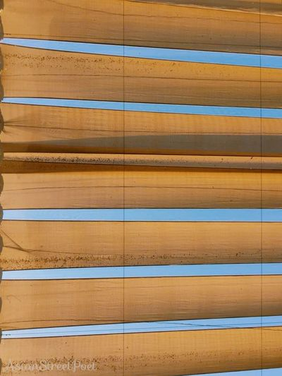 roof Abstract Arts Drawing Philosophy Asianstreetpoet Putrajaya, Malaysia Kuala Lumpur Malaysia Street Photography Building Architecture Backgrounds Striped Wood - Material Pattern Full Frame Textured  In A Row