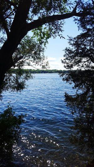 Fine Art Photography Water Wisconsin Life Summer 2016 Travel Nagawicka Lake