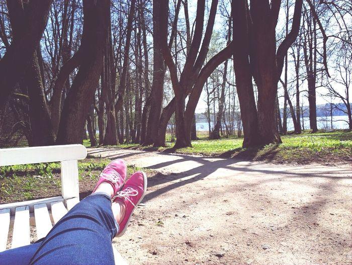 Photo Spring Photography Park