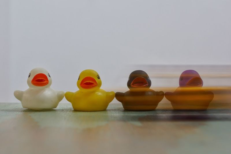 Close-up of rubber ducks on table against white background