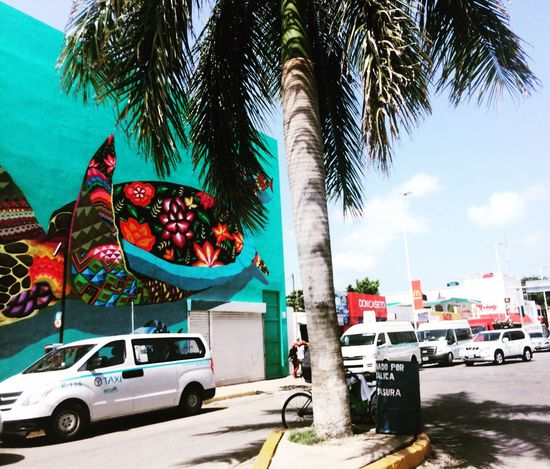 TakeoverContrast Mexico Street Photography Streetart #colors And Patterns