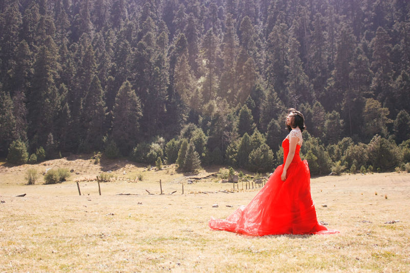 Beauty In Nature Caligraphy Forest Girl Portrait Of A Woman Reddress Trees Wood