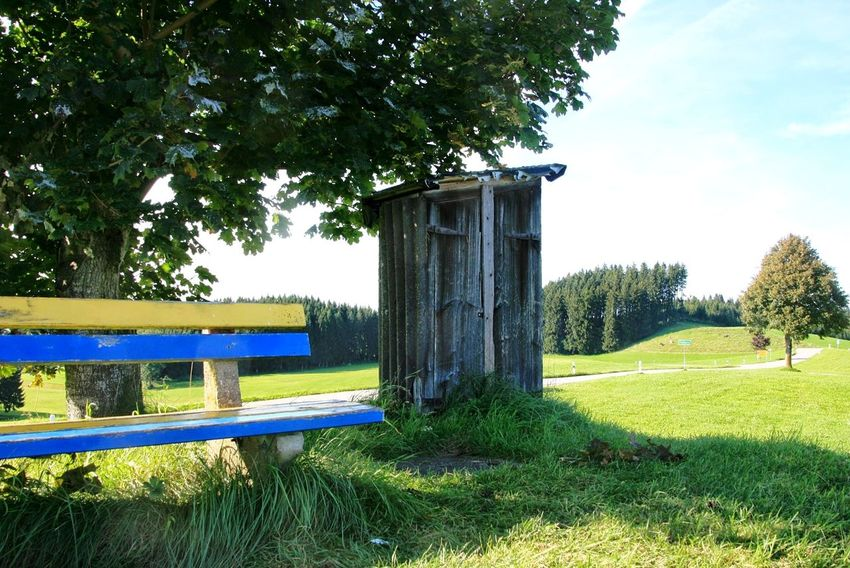 Toilet Klo Häuschen Toilet House Bank Banking Tree Landscape Beauty In Nature Nature Nature_collection Nature Photography Naturelovers EyeEm Nature Lover Green Color Summer Summertime Grass Tree Outdoors Day Green Color No People Growth Nature Sky