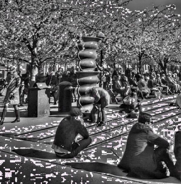 Outdoors Real People Tree Day People Bnw_street Bnw_friday_eyeemchallenge City