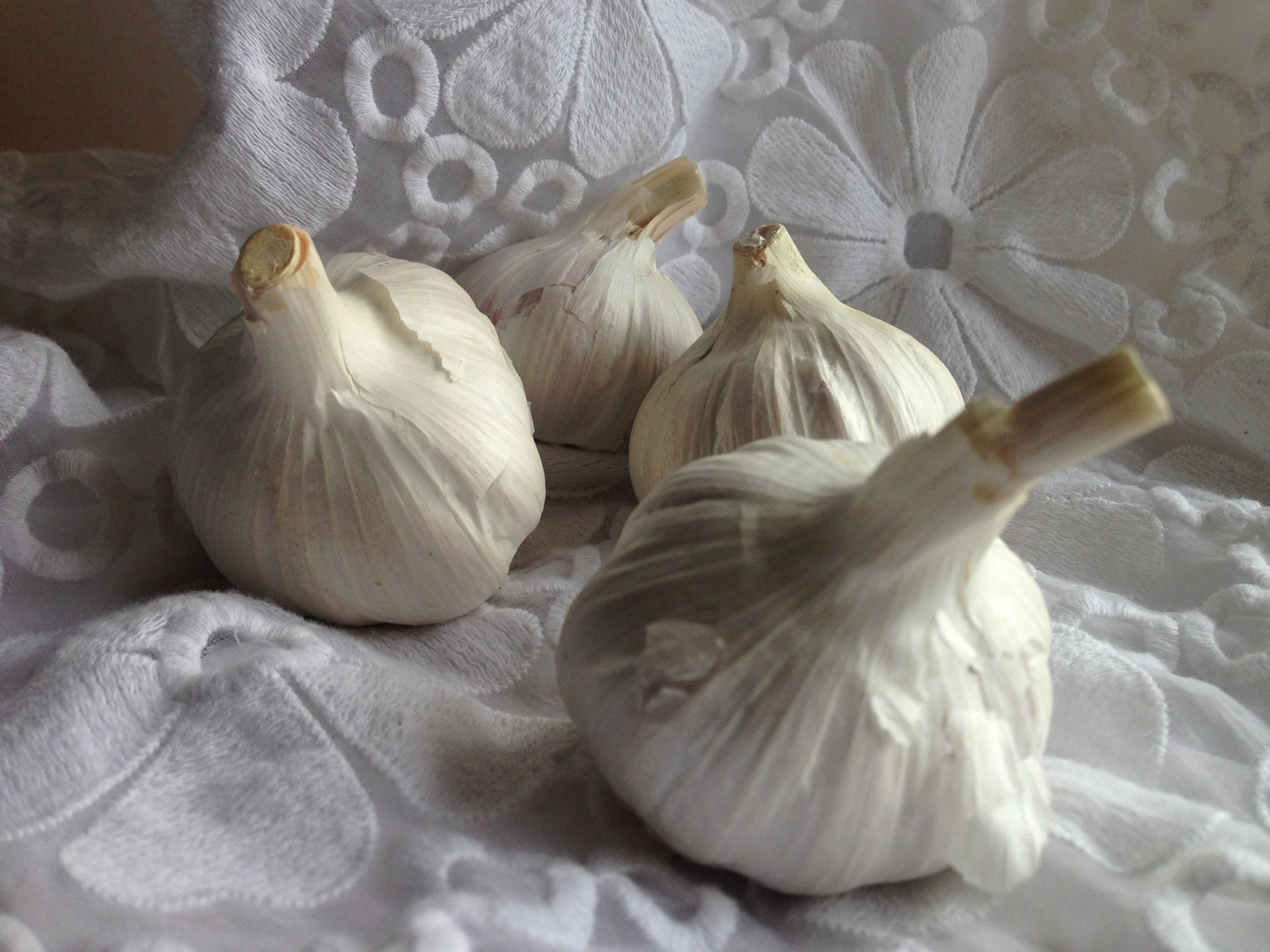 indoors, healthy eating, food, garlic bulb, garlic, food and drink, freshness, no people, close-up, garlic clove