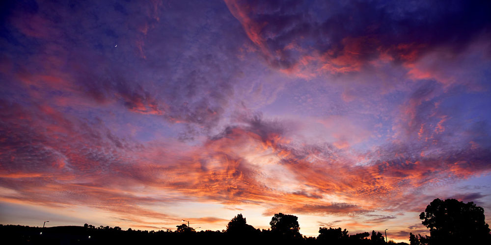Recent brush fires in California have made the sunsets around here lately just amazing. WOW Awe Beauty In Nature Cloud - Sky Day Deep Blue Sky Dramatic Sky Intense Colors Low Angle View Majestic Nature No People Orange Color Outdoors Scenics Silhouette Sky Sunset Tranquil Scene Tranquility Tree