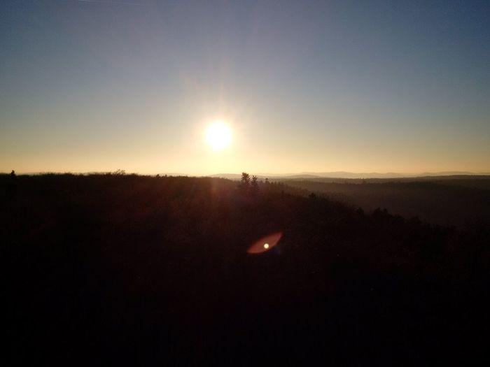 und da behauptet man, Gegenlichtaufnahmen wurden nicht gelingen. Original Photo Z30 Pfälzerwald Humbergturm