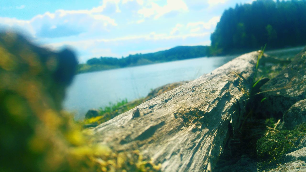 nature, no people, water, day, river, textured, outdoors, moss, close-up, beauty in nature, tree, mountain, sky