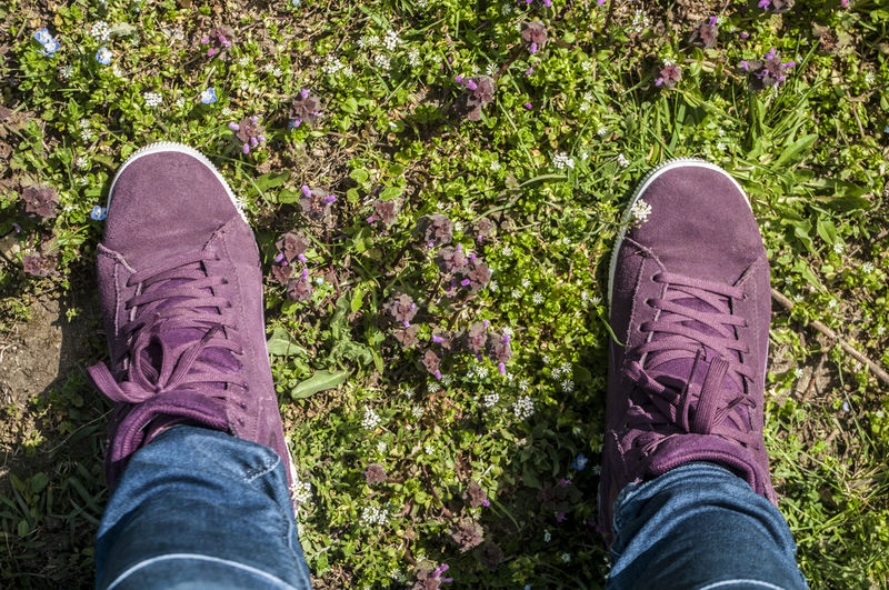 Cropped image of person wearing purple shoes