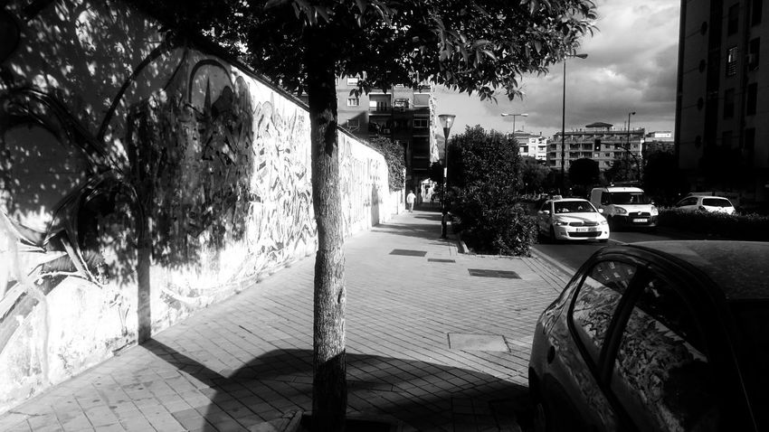 Architecture Black And White Blackandwhite Building Exterior Built Structure Car City City Life Day Footpath Land Vehicle Light And Shadow Mode Of Transportation Monochrome Motion Motor Vehicle Nature Neighborhood No People Outdoors Plant Road Street Transportation Tree