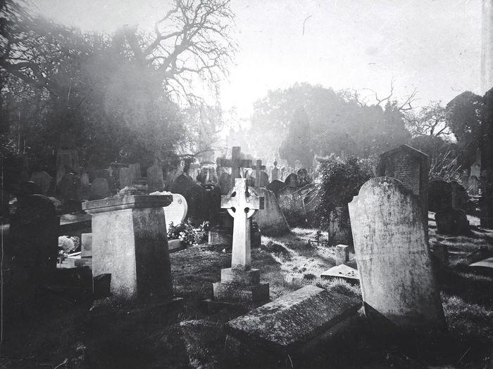 Kensal Green Cemetery Tombstone Cemetery Religion Graveyard Tree Gravestone Cross No People Spirituality Grave Outdoors Day