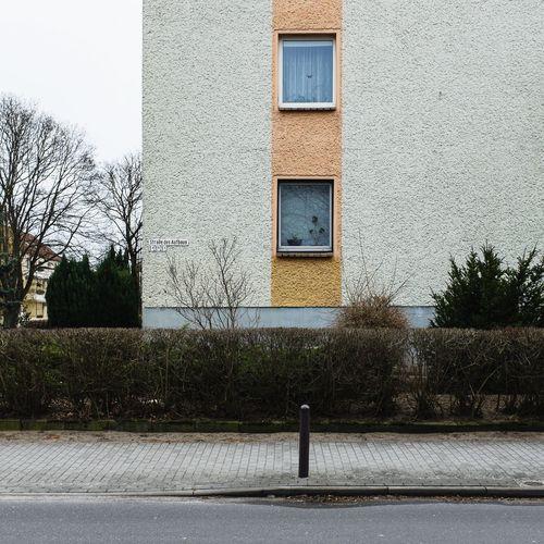 Built Structure Building Exterior Architecture No People Outdoors Tree Day Nature Sky Close-up Hausfassade Façade Suburban Landscape DDR-Architektur