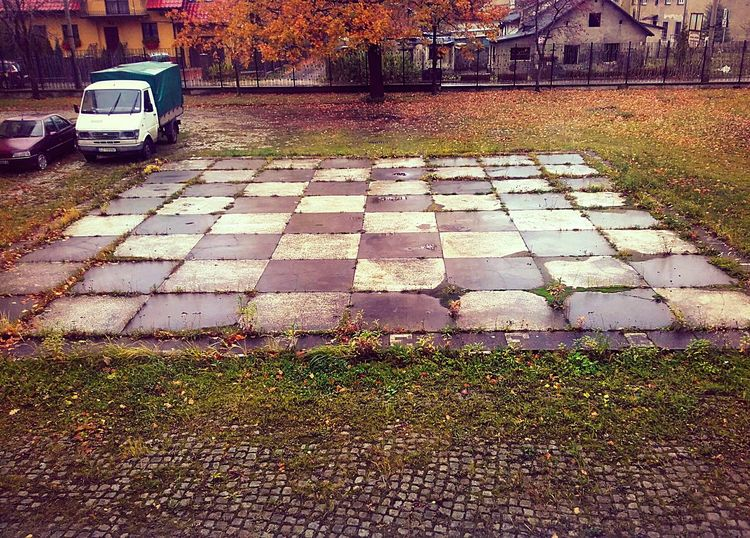 Poland City Light Nature Silesia Zabrze Autumn Day Light And Shadow Weather Rain Chess Chessboard Trees Houses Cars