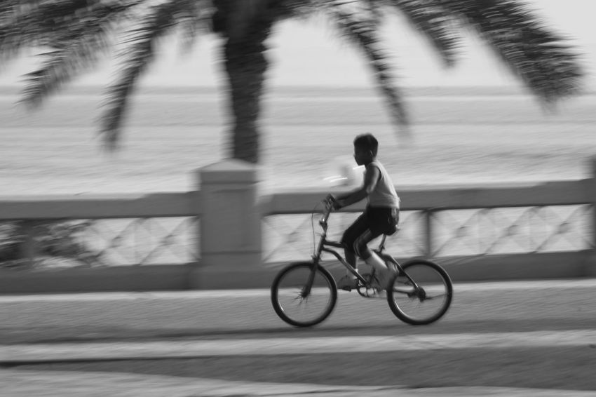 Bicycle Blurred Motion Day Full Length Healthy Lifestyle Leisure Activity Lifestyles Men Motion Nature One Person Outdoors People Real People Riding Speed Tree