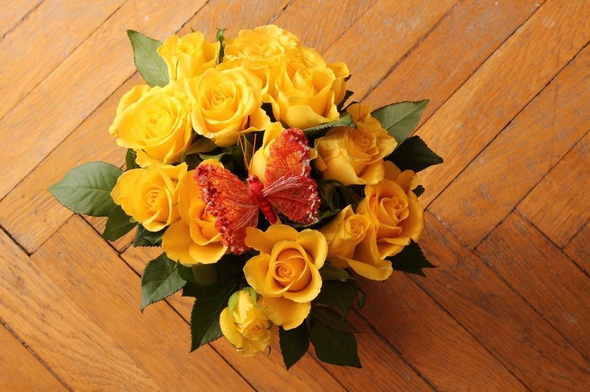 Yellow roses Butterfly Wood - Material High Angle View Variation Flower Indoors  Table Fruit No People Freshness Leaf Close-up