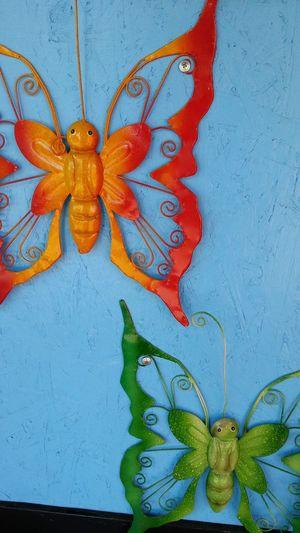 Motylki na desce Hello World Butterfly Goczałkowice