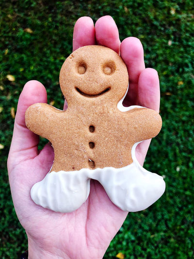 Close-up of hand holding gingerbread cookie outdoors