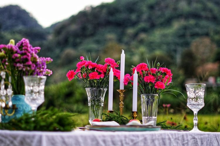 Dinner Dinner Time Romantic No People No Person Day Flower Flower Head Wedding Table Close-up Plant Flower Arrangement Blossom Bunch Of Flowers Blooming