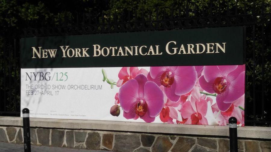 NY Batanical