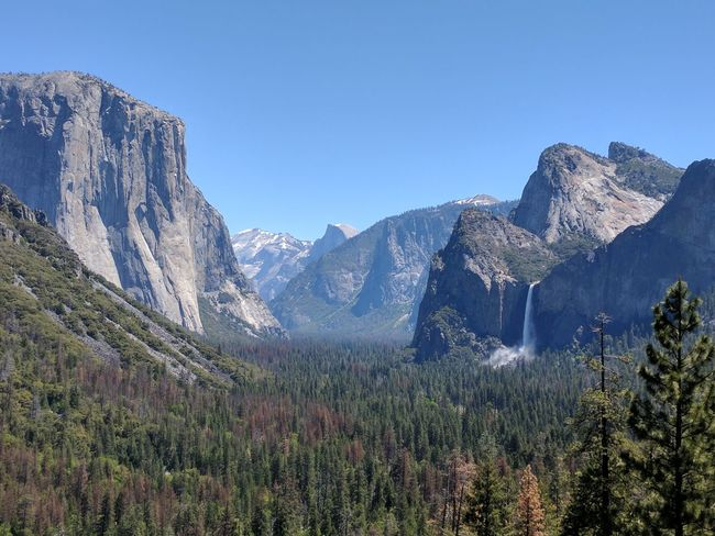 Landscape Beauty In Nature Cliff Forest Waterfall Yosemite National Park Yosemite Valley Spring Scenics Outdoors Mountain Range Mountain Peak Snow Mountain Travel Destinations Vacations Pine Tree Nature Day Iconic Landscape